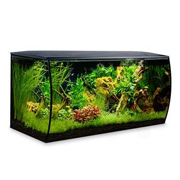 Fluval flex freshwater aquarium kit Black 123L