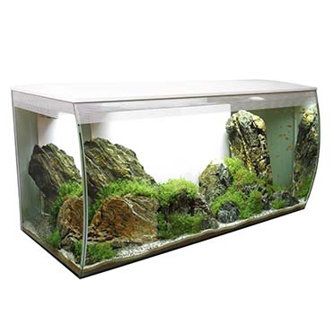 Fluval flex freshwater aquarium kit White 123L