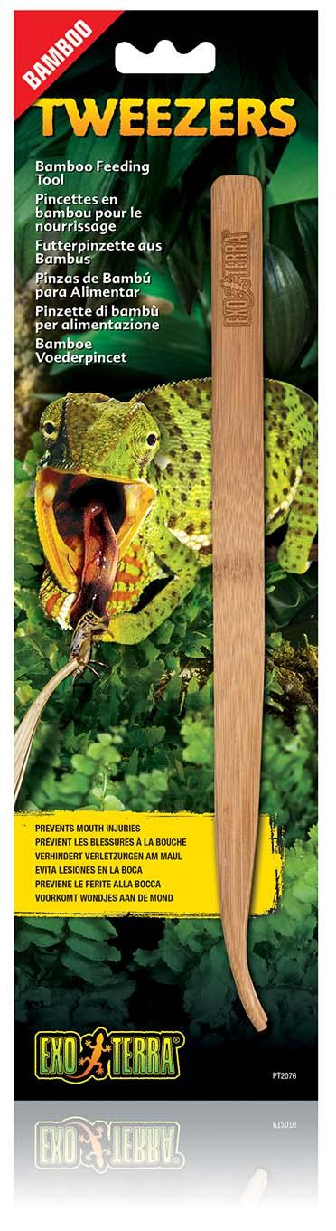 Ex bamboo tweezers feeding tool
