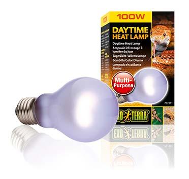 Ex day glo bulb sg a19/100w