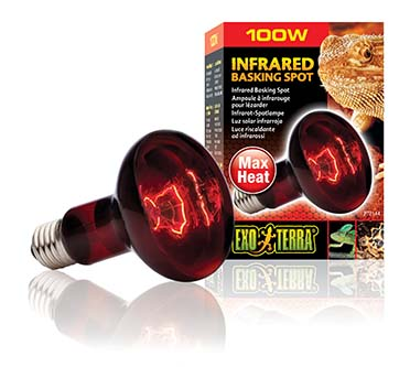 Ex heat glo infrared basking spot 100w