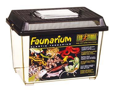 Ex faunarium S