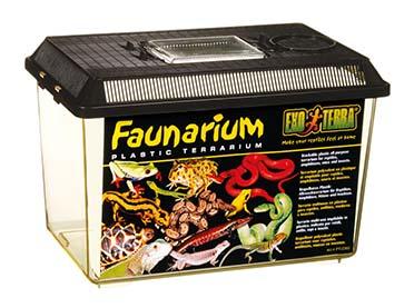 Ex faunarium M