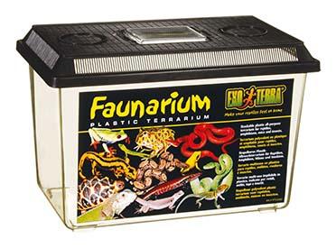 Ex faunarium L