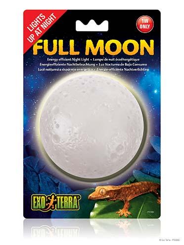Ex full moon night light