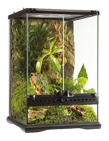 Ex all glass terrarium incl background  30x30x45CM