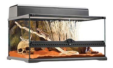 Ex glas terrarium incl achterwand 60x45x30CM