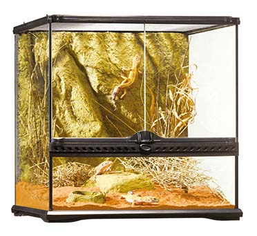 Ex glas terrarium incl achterwand 45x45x45CM