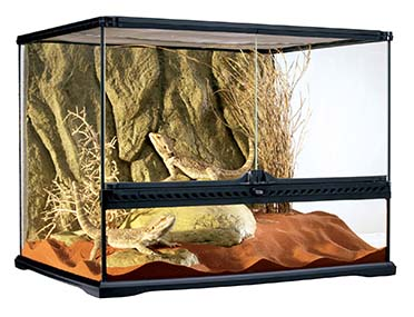 Ex glas terrarium incl achterwand 60x45x45CM