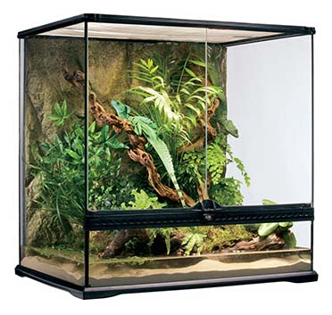 Ex glas terrarium incl achterwand 60x45x60CM