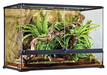 Ex glas terrarium incl achterwand 90x45x60CM