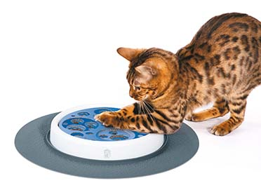 Ca design senses scratch pad