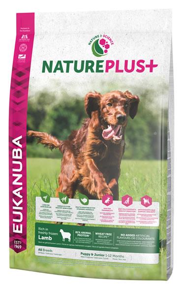 Dog nature puppy lamb  2,3KG
