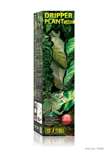 Ex dripper plant large