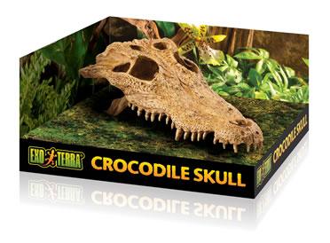 Ex terrarium decor crocodile skull  23x12x7,5CM
