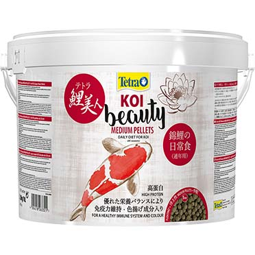 Pond koi beauty  M - 10L