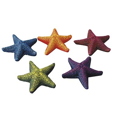 Starfish assorted  8,5CM