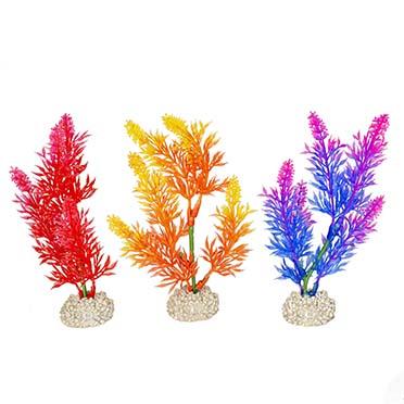 Plant elodea densa Gemengde kleuren S - height 13CM