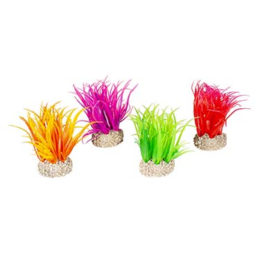 Plant hair grass Mixed colors S - height 6CM