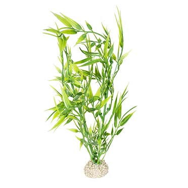 Plant bamboo Green M - height 27CM