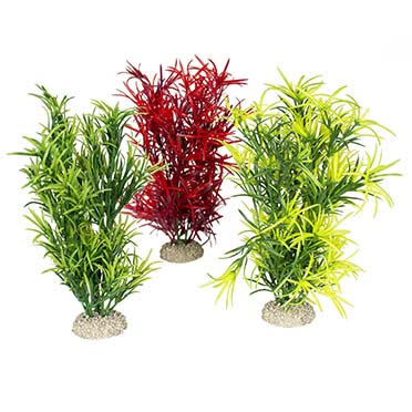 Plant hydrilla Mixed colors L - height 27CM