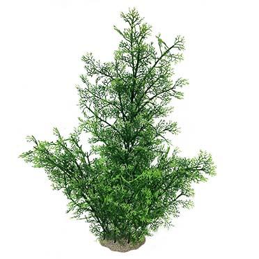 Phoenix Green XL - 56cm