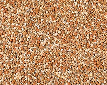Natural youngsters no maize maxi  p30  25KG