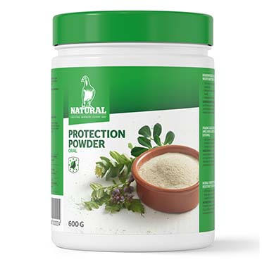 Natural protection powder - oral  600ml
