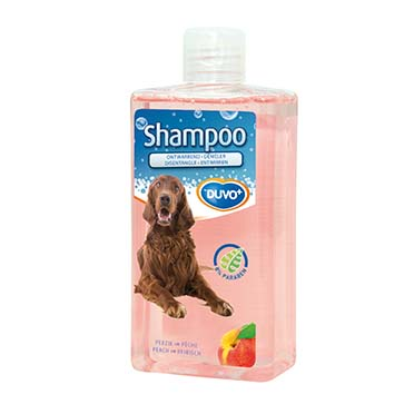 Shampoo disentangle  250ml