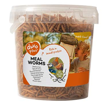 Meal worms  ca. 200GR