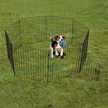 Puppy run with door & net & hooks Black 60x60cm