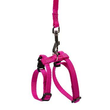 Ferret walking set Black/pink 15x5x1,8cm