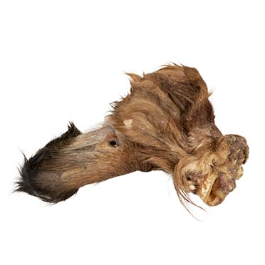 Farmz beef ears with hair  50st