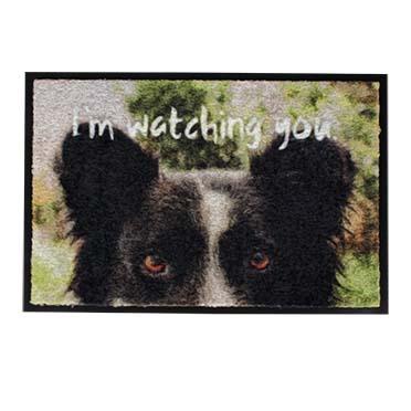 Pet floor mat indoor i'm watching you  60x40x0,6cm