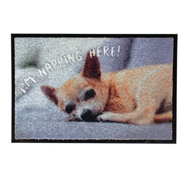 Pet floor mat indoor i'm napping here!  60x40x0,6cm