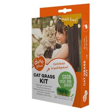 Set für den anbau von gesundem katzengras  70g - 17,5x13x3cm
