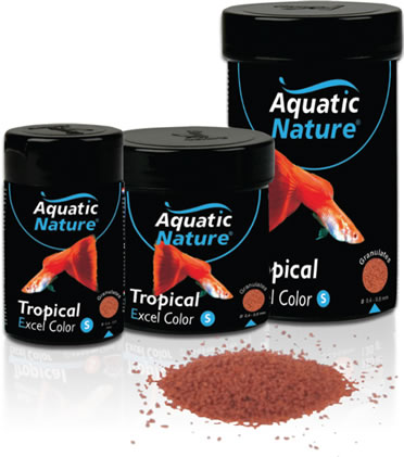 Tropical small excel color  124ML